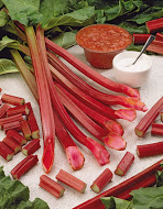 Red Rhubarb