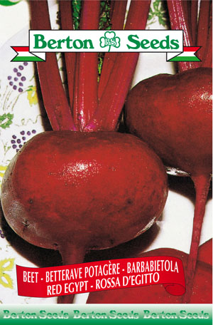 Egypt red Beet Seeds